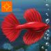 Fish Tycoon for iPad